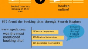 Domestic travel survey results: Infographic
