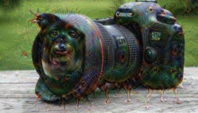 Turn real into surreal with Google DeepDream