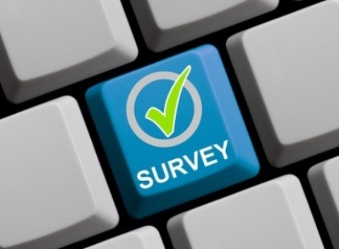 Learning about your customers and market cost effectively through online surveys
